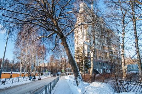 Зимний Петербург. Удельный парк